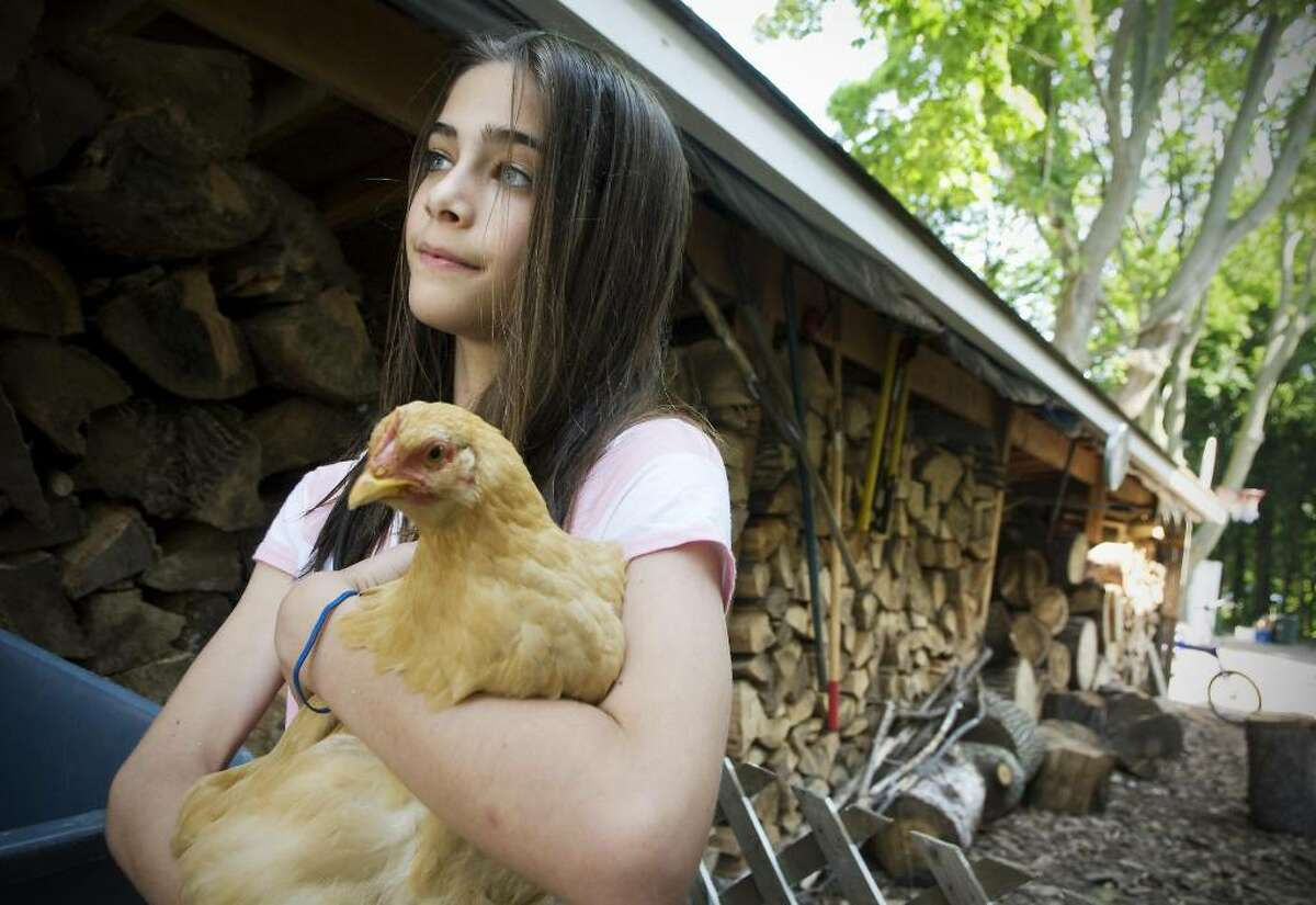 """From the """"Breaking the Sound Barrier"""" series, Margo Libre, 12, holds one of the chickens here family raises on their property on Seaside Place. For the past five years, the Libre family has been living in an energy efficient home which produces electricity with solar panels, grow their own vegetables, use firewood for heat and keep chickens to have fresh eggs. June 30, 2009"""