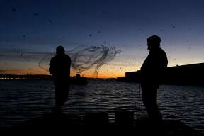 Rudy Domingo (left) casts a net into the bay while fishing for herring with Francis Reyes (right) off China Basin before sunrise in San Francisco, Calif. on Friday, Jan. 11, 2013. At this time of year, herring come close to the shoreline to lay eggs, giving fishermen the chance to net the fish in large numbers.