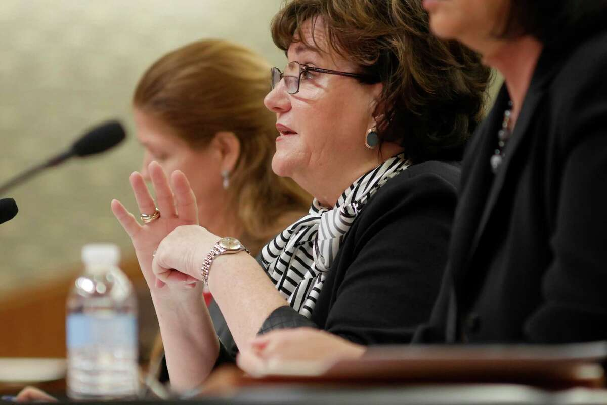 New York State Education Department Commissioner MaryEllen Elia testifies before a joint Legislative Budget Hearing on Elementary and Secondary Education on Tuesday, Feb. 14, 2017 in Albany, N.Y. (Paul Buckowski / Times Union)
