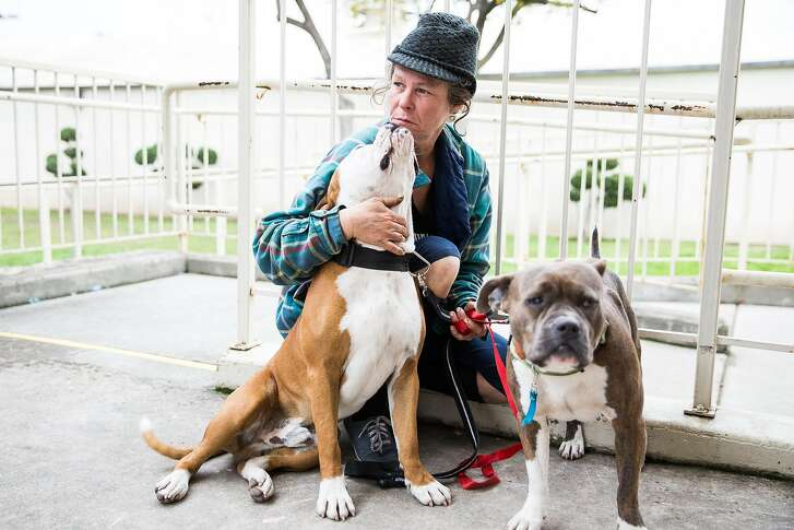 Toni Breer, who lives homeless in Oroville, continues to stay with her dogs at the evacuation center at the Butte County Fairgrounds in Chico, California on February 15, 2017.