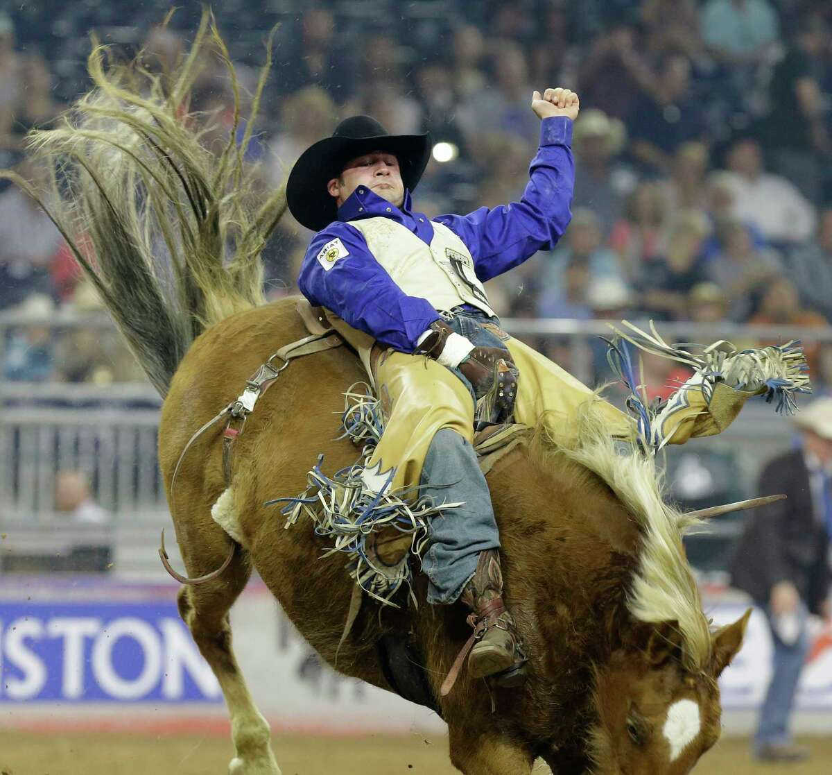 Kaycee Feild of Spanish Fork, UT competes in bareback riding at RodeoHouston during the Houston Livestock Show and Rodeo in NRG Stadium Tuesday, March 15, 2016, in Houston. ( Melissa Phillip / Houston Chronicle )