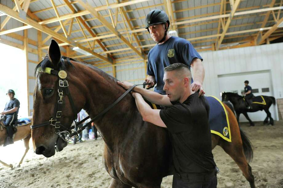 Saratoga Springs Officer John Sesselman, riding Jupiter, demonstrates with State Park Officer Zachary Voegler how to make an arrest on horseback during equine training for horse patrols on Wednesday, May 27, 2015, at Upstate Equine Medical Center, in Northumberland, N.Y. (Cindy Schultz / Times Union) Photo: Cindy Schultz / 00032004A