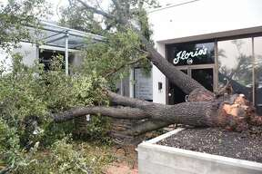 Damage from thunderstorms that pounded San Antonio and produced a possibletornado that touched down in Alamo Heights is seen here Monday, Feb. 20, 2017, in the 7700 block of Broadway.