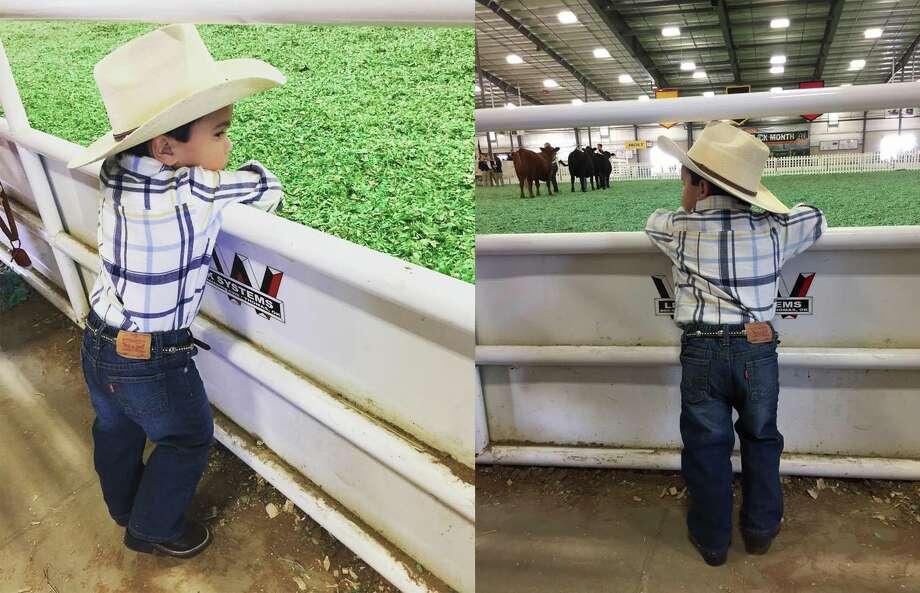 Marco Velasco, 2 years old