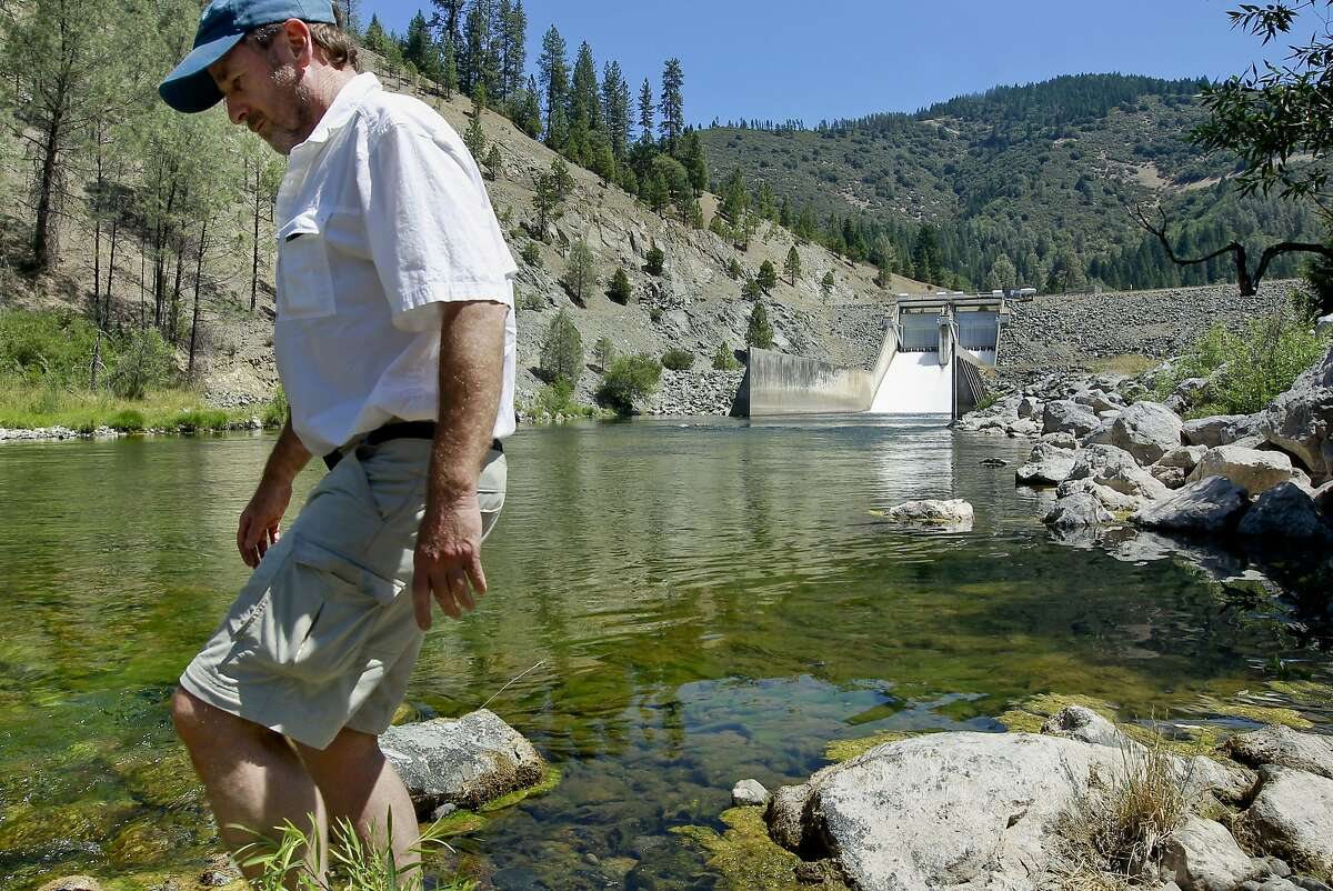 Tom Stokely a water analyst with the California Water Impact Network walks below the Lewiston Dam on the Trinity River in Lewsiston, Calif on Friday July 19, 2013. Low water and a giant salmon run has created concern about a fish die off in the Klamath River similar to what happened in 2002. The Bureau of Reclamation is proposing releases of water from Trinity Dam to help fish but agriculture interests have threatened to block the idea.