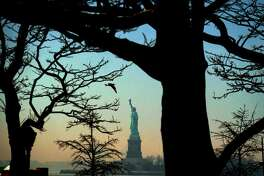 A bird flies as the Statue of Liberty is seen from  Battery Park in New York on February 8, 2017.