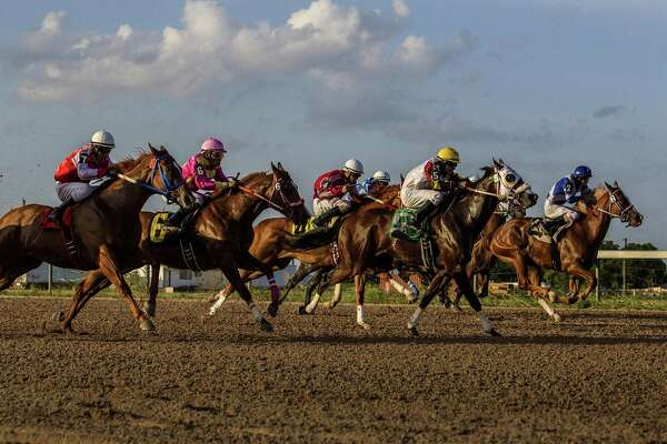 A Miami jury on Wednesday found Christopher J. Hall, the former chairman of a company that used to operate Retama Park in Selma, violated securities laws.