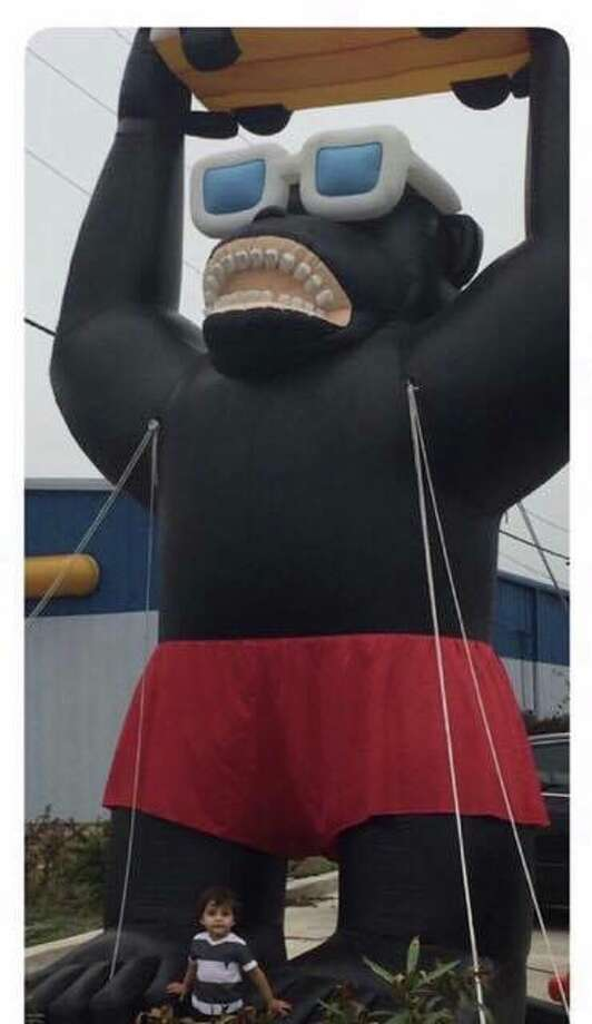 A 12-feet-tall inflatable gorilla was stolen from a Fiat dealership in Corpus Christi on Feb. 19, 2017. Photo: Courtesy/Fiat Of Corpus Christi