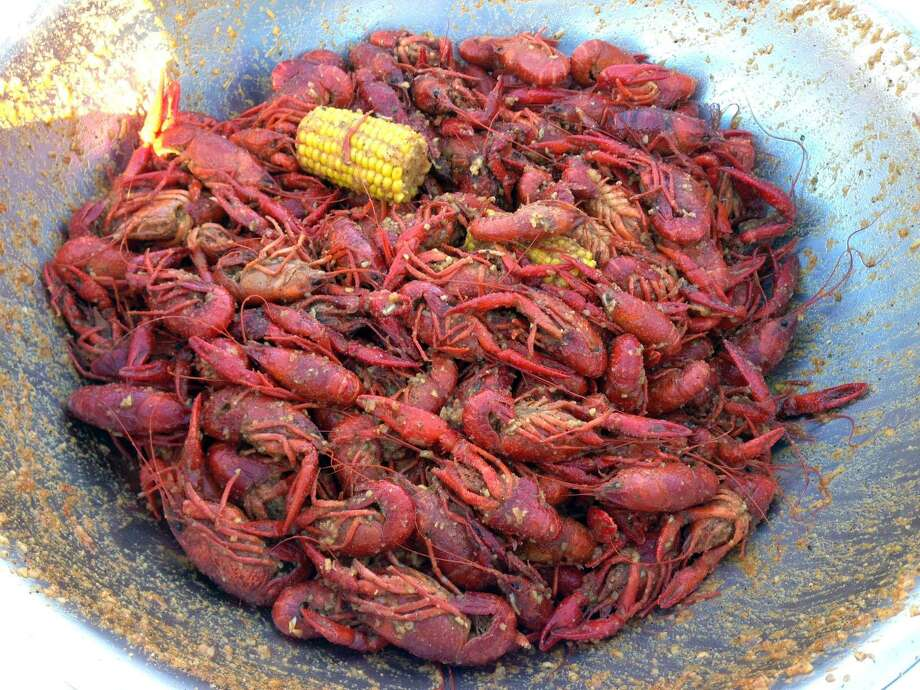 It's mudbug time, y'all. Crawfish are big enough and cheap enough now that they're coming in by the boatload — literally. Photo: Greg Morago /Houston Chronicle