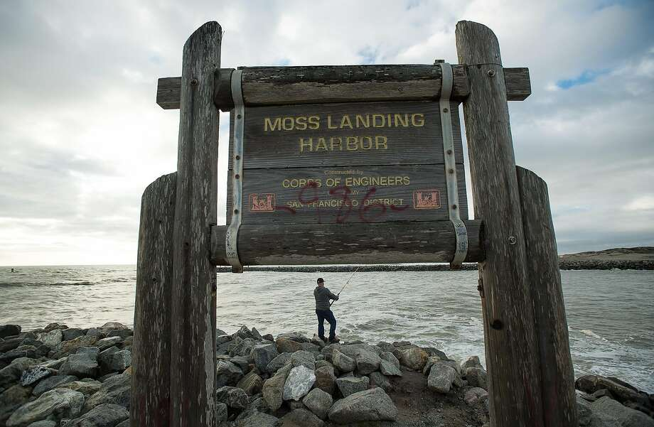 A fisherman casts his line near Moss Landing Harbor. Photo: Noah Berger, Special To The Chronicle