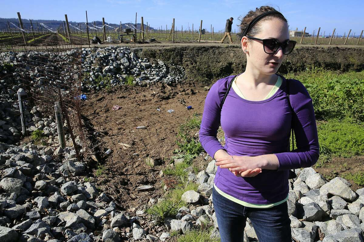 Sarah Beganskas, a UC Santa Cruz PHD earth sciences hydrologist major and student researcher stands in the dirt canal that carries the rain water collected and transported into the groundwater recharge basin, in Watsonville, Ca. as seen on Friday February 24, 2017. It is hoped that more groundwater basins can be built to replenish the aquifers down below.
