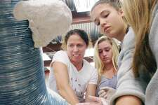 "Sculptor Paige Bradley, left, works with Greenwich Country Day School students, Ava Doherty, 13, a 7th grader, center, and Sofia Giannuzzi, 14, a 8th grader, in creatng a caterpillar sculpture in Bradley's art studio in Stamford, Conn., Friday, Feb. 24, 2017. The Greenwich Country Day School students with the help of the acclaimed artist Bradley were volunteering their time and artistic expertise making various sculptures and paintings in preparation for the Kids in Crisis fundraiser ""An Evening in Wonderland""  that takes places at the Greenwich Country Club at 6:30 pm, Friday, March 3rd. Kids In Crisis is a non-profit organization that provides emergency shelter and services for children and families in need in Greenwich and Fairfield County."