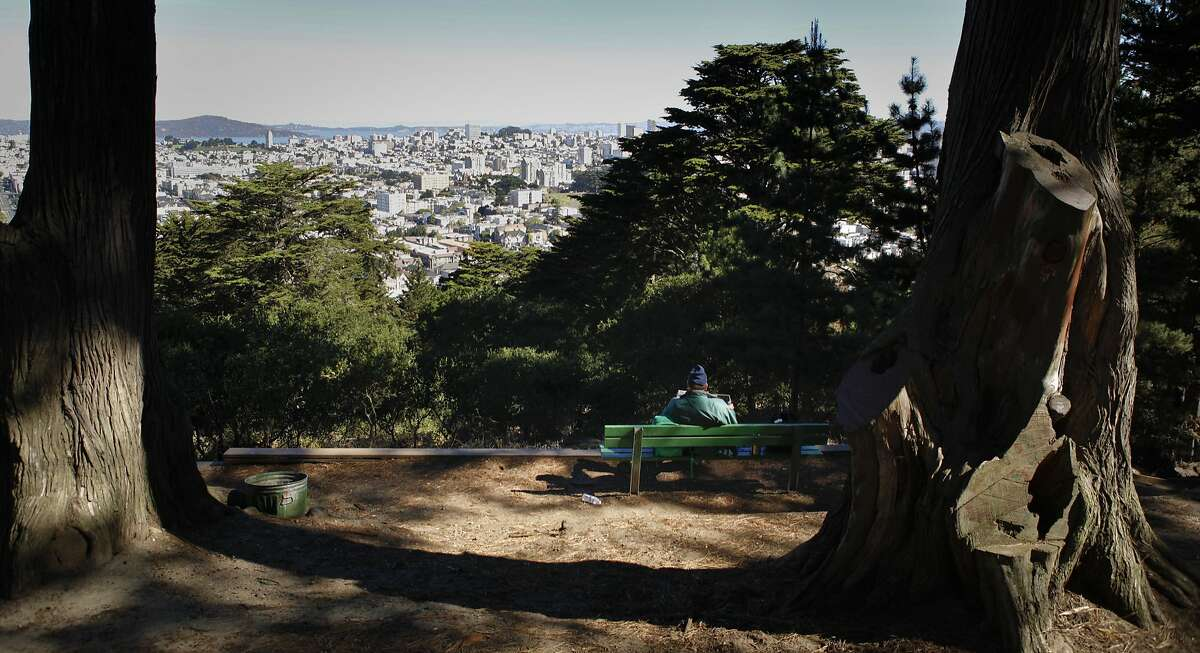 Parks are great. Of course there are parks on the East Coast too, but San Francisco's are some of the most stunning I've ever encountered.