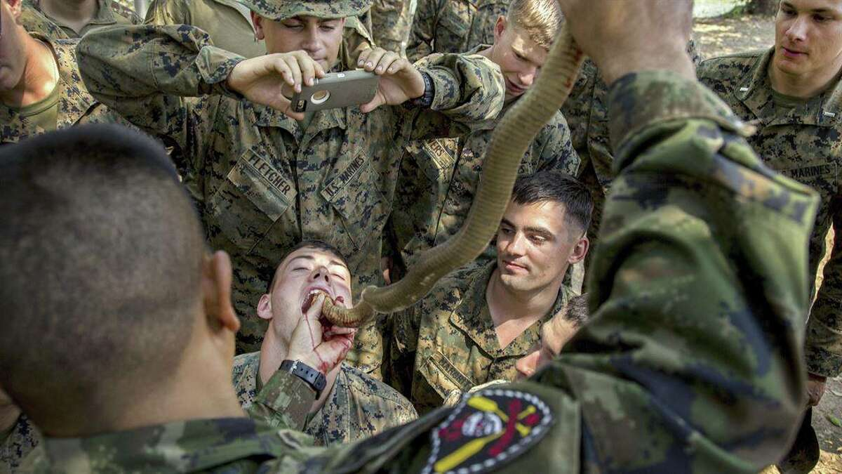 """""""Snake Eaters! #Marines drink cobra blood during #CobraGold17 at Camp Ban Chan Krem, Thailand. Troops can use cobra blood and flesh as nutrition where sustenance is scarce."""""""