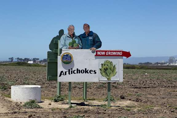 UNITED STATES - JUNE 16: Sign: Artichokes, now growing. California (Photo by Carol M. Highsmith/Buyenlarge/Getty Images)
