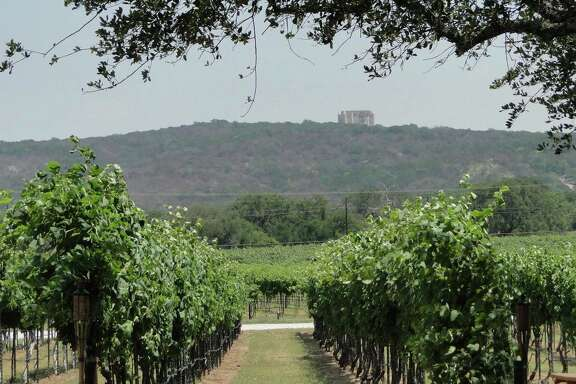 The vineyards at Perissos Vineyard and Winery with Falkenstein Castle, a wedding venue, in the background.
