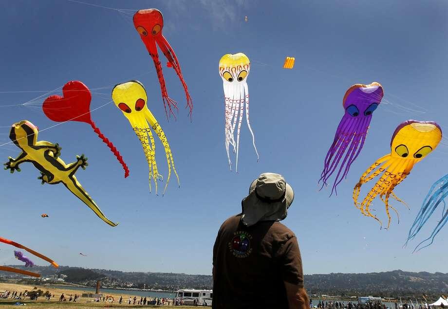 Dave Hoggan of the Berkeley Kite Wranglers monitors kites in flight. Photo: Paul Chinn, The Chronicle