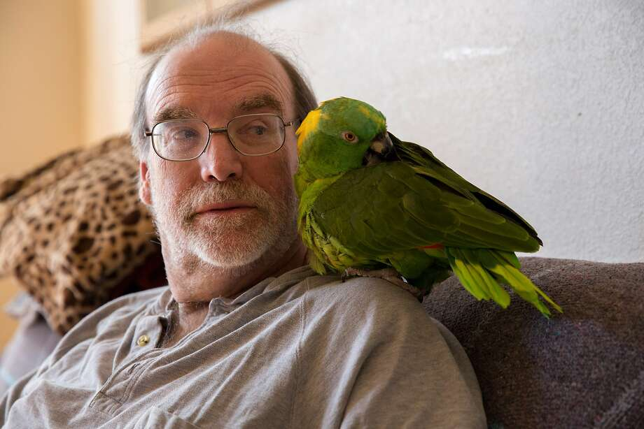 Landlord Mike Reed and his parrot Cappi at his home in San Francisco. Photo: Santiago Mejia, The Chronicle