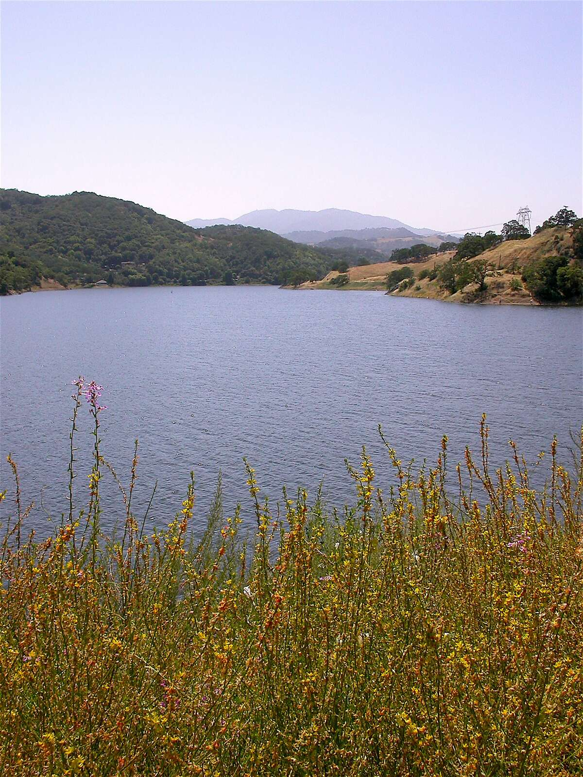 A full Chesbro Reservoir west of Morgan Hill with its shores lined by an array of tiny wildflower blooms. In the Bay Area, nearly all lakes are now full, with the first wildflowers of the season emerging, projected to peak in April.