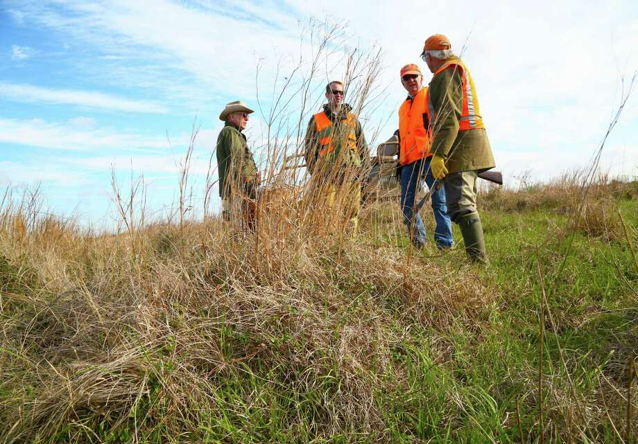 During a break in a quail hunt on a tract of healthy coastal prairie in Wharton County, Eliot Tucker, Russell and Henry Hamman and Wildlife Habitat Federation president Jim Willis discuss ecological and economic benefits of restoring native grasslands . Photo: Shannon Tompkins / Houston Chronicle