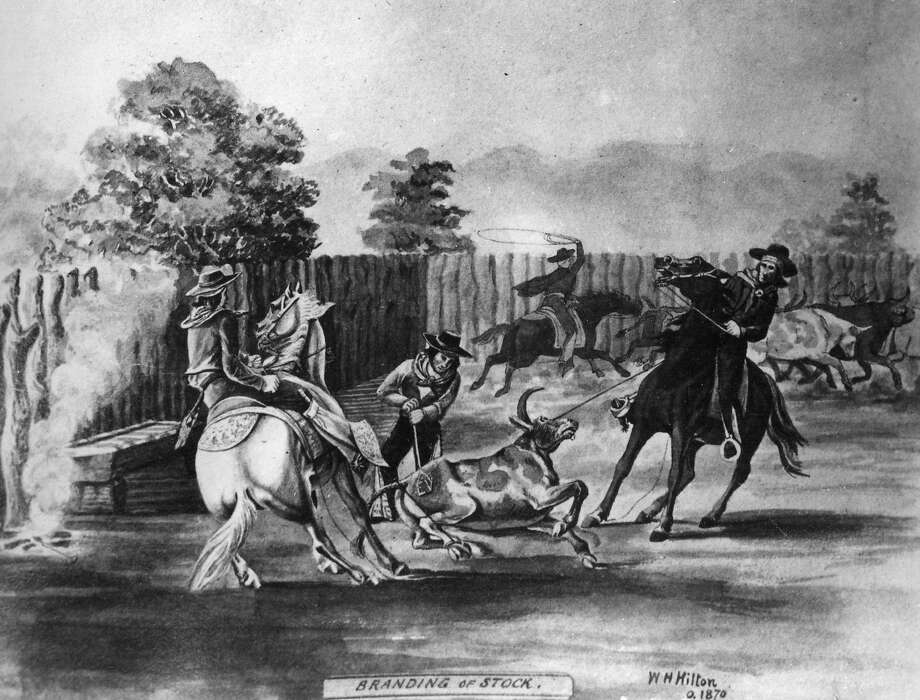 Spanish cowboys round up bulls in a drawing from 1870.