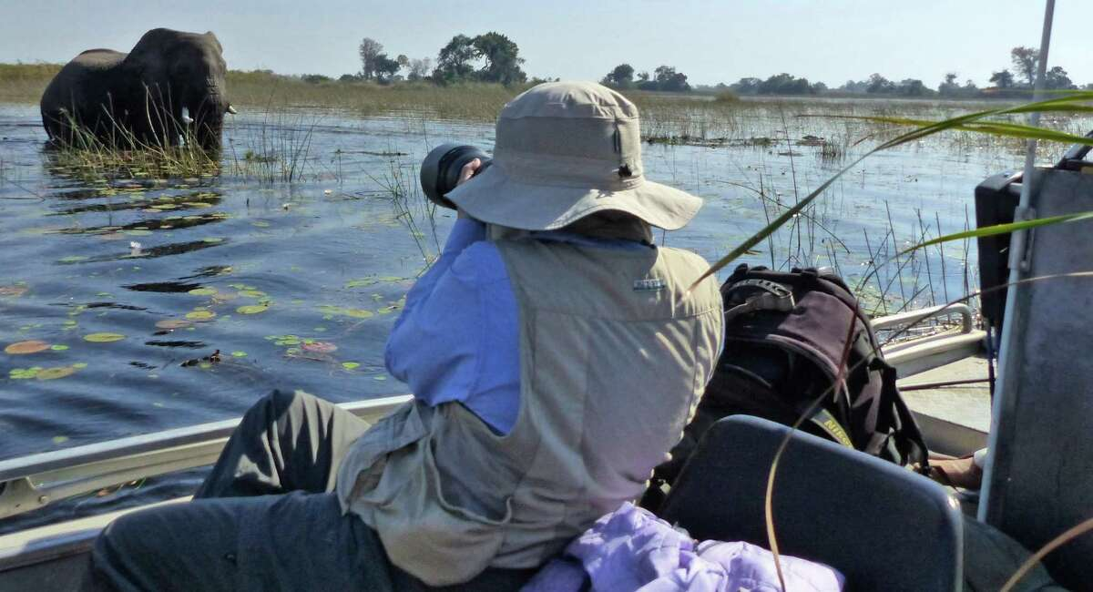 This Sept. 4, 2016 photo taken in Botswana's Okavango Delta, shows a photographer collecting an image of an elephant foraging for food. The operator of this specialized photo tour used different modes of transportation ranging from helicopters to boats and safari vehicles to provide wildlife viewing ?- no matter what the terrain. One of the best ways to approach and photograph wildlife is by boat. (Dean Fosdick via AP) ORG XMIT: NYLS214