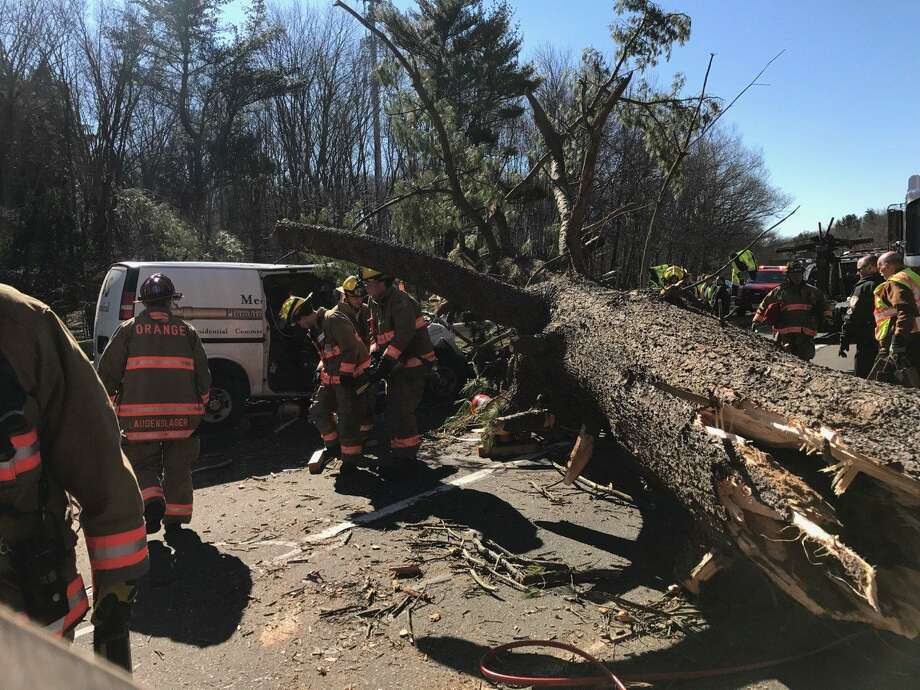 2 hurt after wind blows tree down on parkway - Connecticut Post