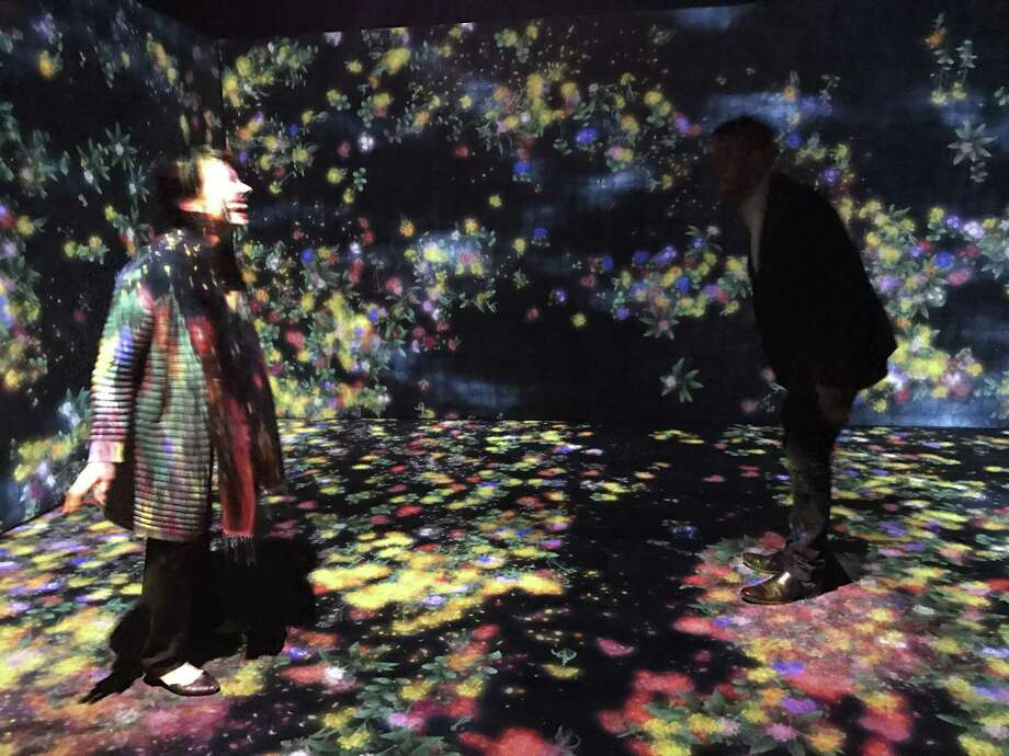 "Visitors to teamLab's ""Flowers and People, Cannot be Controlled But Live Together - A Whole Year per Hour"" watch flowers sprout from seeds, grow and die around them. Photo: Molly Glentzer, Houston Chronicle"