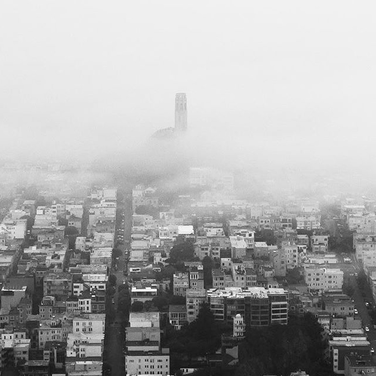 @escapeartyst loves San Francisco and its fog.