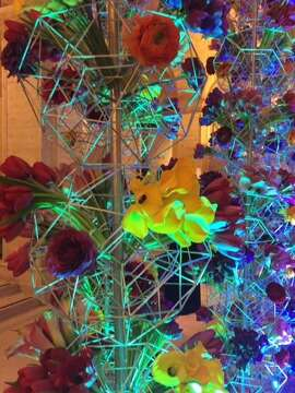 Flowers by McCalls' Miguel Porres, at the entrance to the Asian Art Museum gala.