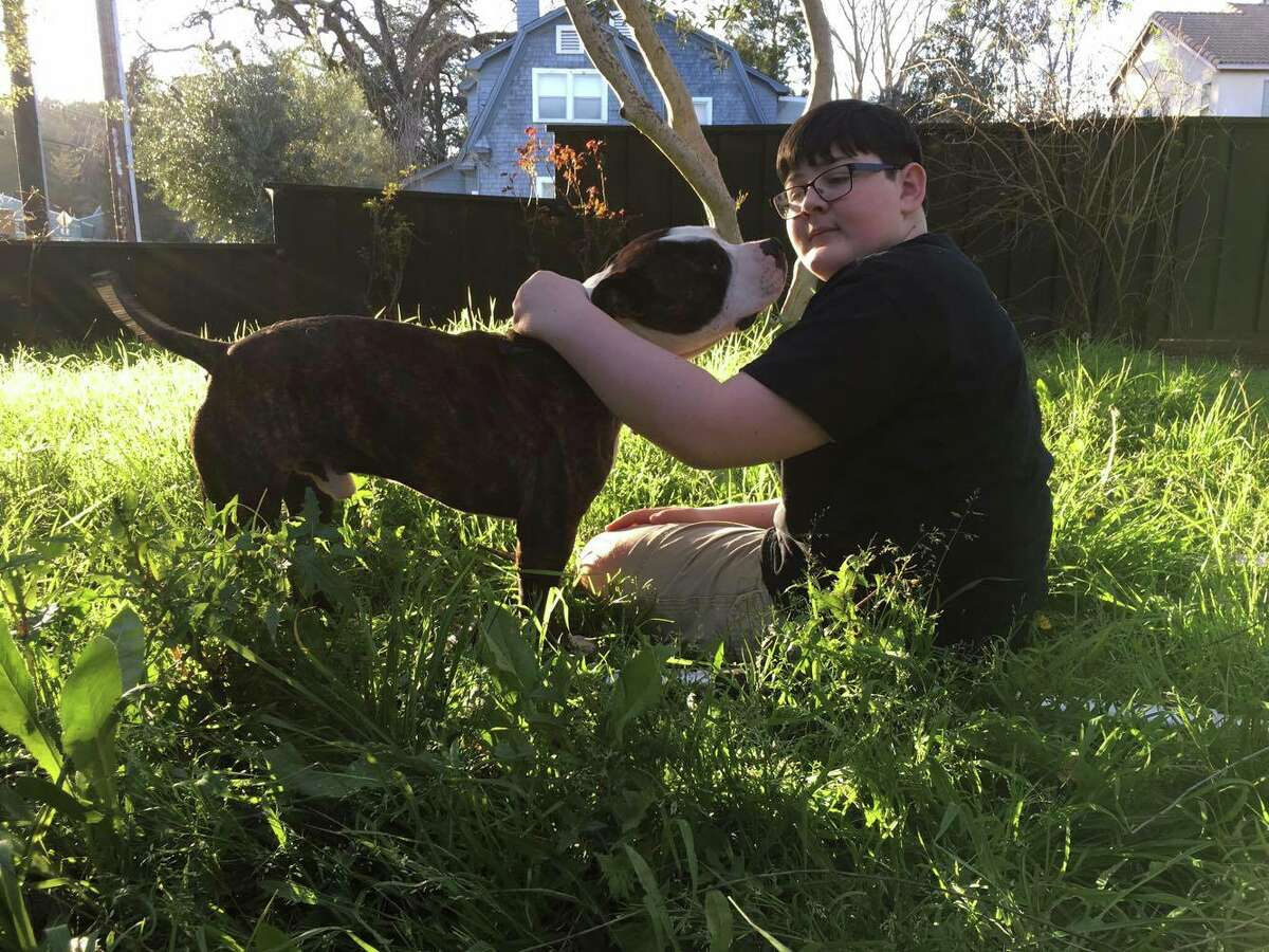 QuinnScharnand his three-legged dog Logan. Howell brought his new companion home from the First Street Shelter in Sacramento on March 2.