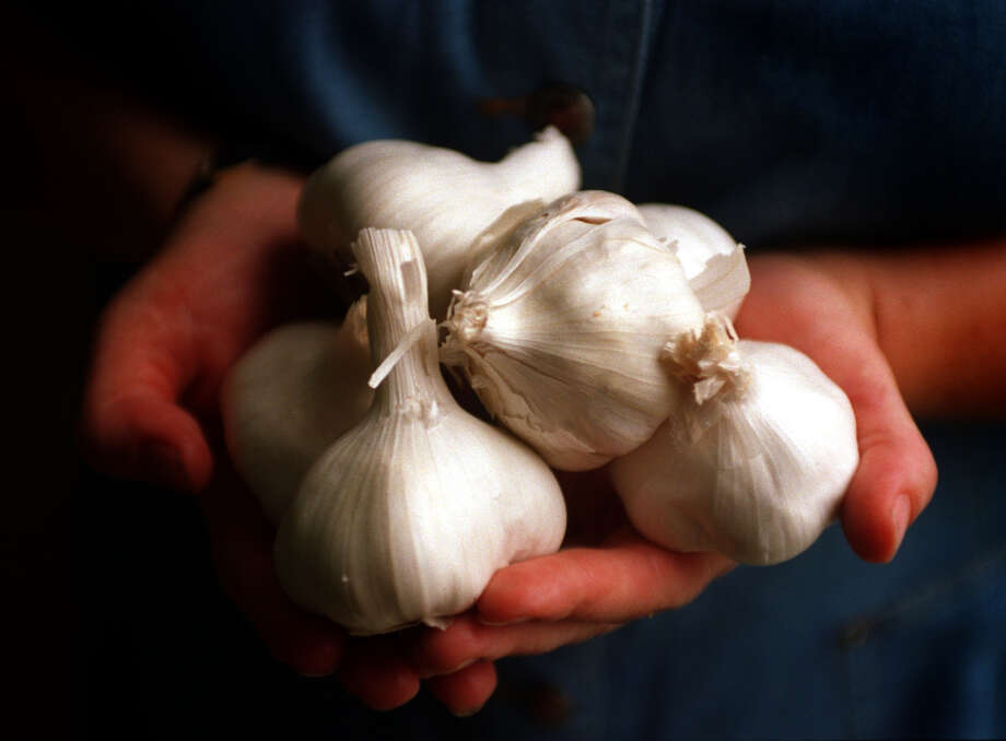 Garlic contains pungent compounds that can trigger or, for some, calm a cough. Photo: Spencer Weiner / The Los Angeles Times