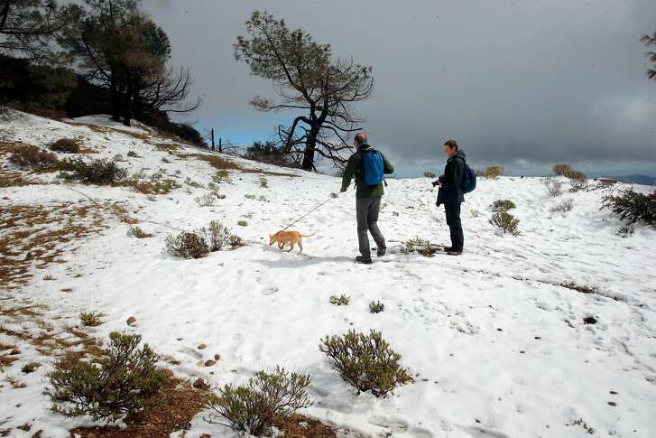Jochen Kottgen and Juno, along with his sister Britta Kottgen climb to the summit of Mt. Diablo State Park which received a couple of inches of snow during the latest storm to move across the Bay Area as seen on Mon. March 6, 2017, near Danville, Ca.