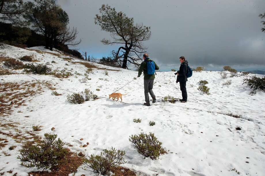 Jochen Kottgen and Juno, along with his sister Britta Kottgen climb to the summit of Mt. Diablo State Park which received a couple of inches of snow during a March 2017 storm. Photo: Michael Macor / The Chronicle 2017