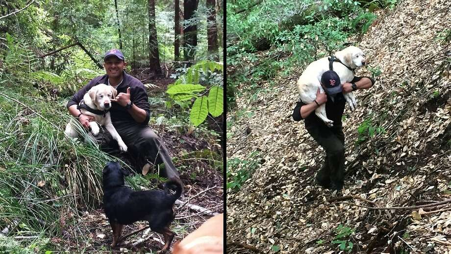 Dan Estrada carries Sage, a blind Lab who was lost in the Santa Cruz Mountains for eight days. Estrada was hiking with a friend when he spotted the dog in a stream. They thought he might be dead. Photo: Dan Estrada