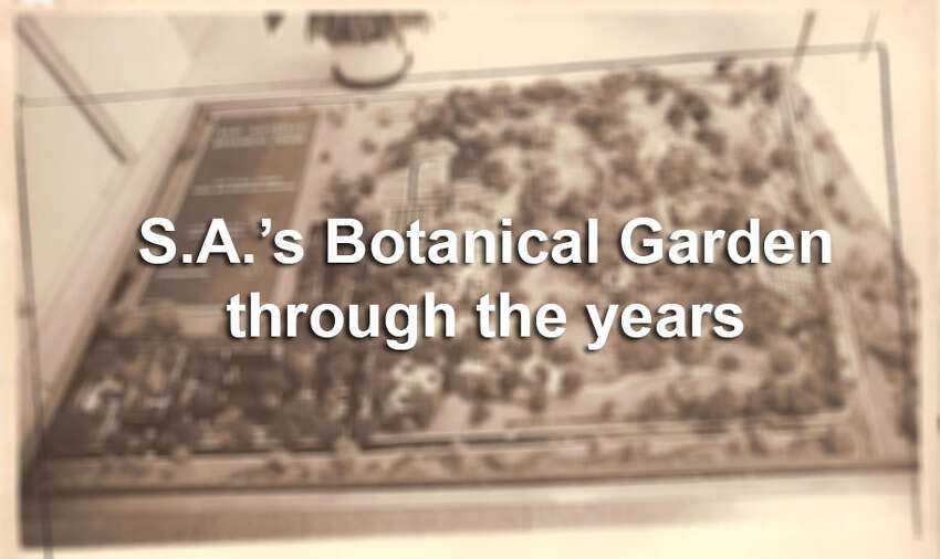 Click ahead to see the early days of the San Antonio Botanical Garden, which opened in 1980.