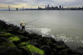 Vince Cheng, of San Francisco fishes along the western shoreline of Treasure Island on Tues. March 7, 2017, in San Francisco, Ca.
