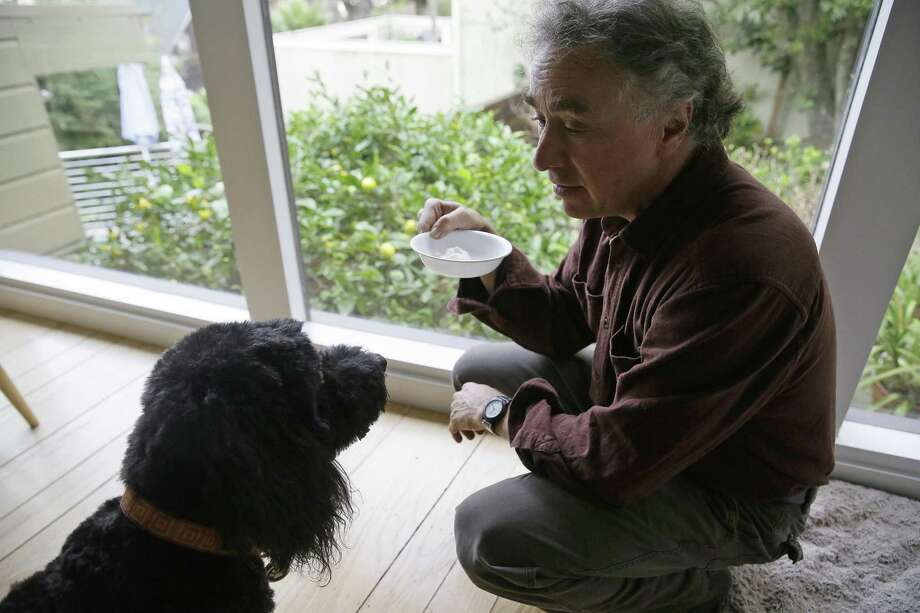 Michael Fasman feeds Hudson a yogurt containing cannabis tincture at his home in San Francisco. As more states legalize marijuana for humans, more pet owners are giving their furry companions cannabis-based extracts, ointments and edibles marketed to treat everything from arthritis and anxiety to seizures and cancer. Photo: Eric Risberg /Associated Press / Copyright 2017 The Associated Press. All rights reserved.