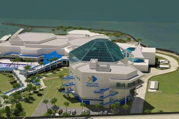 The Texas State Aquarium in Corpus Christi.