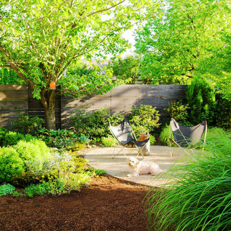 Envelop spaces Playful geometry breaks this backyard into dining and seating circles. The circular landing pads filled with decomposed granite are great for lounging and dining in the backyard, edged by easy-care plants all soft and sturdy enough to withstand dogs—who can run around in the unplanted, unpaved space. Fat, dwarf Atlantic white cedars (Chamaecyparis thyoides 'Heather Bun') enclose the 10-foot-wide dining area, while ornamental grasses, shrubs, and perennials define the 12-foot-wide seating space. A flowering cherry (Prunus serrulata 'Kwanzan') shades both circles. Photo: Jon Jensen