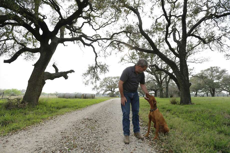 Atascosa County resident Russell Wilson stands on his property with his dog, Rider, on Tuesday, Feb. 28, 2017. The county is known for its loamy sand, good for growing peanuts, other legumes and strawberries. Now residents like Wilson are upset about a propsed frac sand mine that could be coming to their community. The mine's main site is located directly across a gravel road from Wilson's home. A Pennsylvania-based mining company about six months ago created an LLC in Texas and has targeted around 1,000 acres for a new mine. A group has organized in protest and so far the TCEQ has received 40 written protests and 163 public hearing requests. Atascosa County Judge Robert Hurley said he has told the mining company he doesn't want them there, but there's not much more the county can do, other than try to make it difficult for the company to run trucks 24 hours per day on its gravel roads. There's also a historic marker near the proposed site commemorating the Battle of Medina, the bloodiest conflict ever on Texas soil, whose precise location a mystery. Around 1,000 died in the early bid for Mexico's independence from Spain. The Republican Army of the North, including Tejanos and American Indians, was defeated by the Spanish Royal Army. The running battle lasted four hours and covered up to 8 miles, though no one has proven the precise location. Wilson along with fellow county resident Jessica Hardy, who are among the people living near the proposed sand mine, have organized a local group in trying to fight the permit. (Kin Man Hui/San Antonio Express-News) Photo: Kin Man Hui / San Antonio Express-News / ©2017 San Antonio Express-News