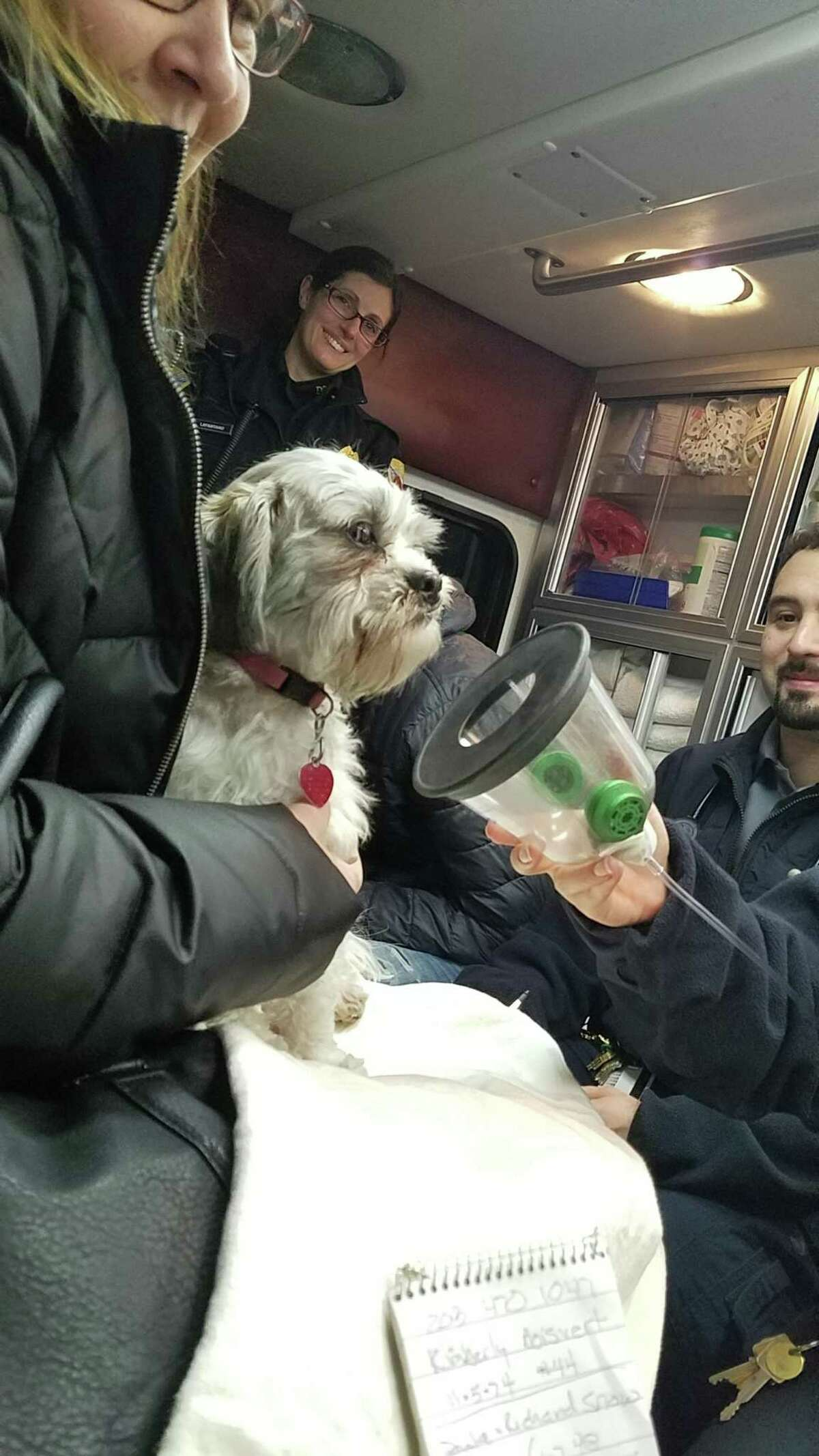 Medics provide oxygen to Sophie, a dog that was rescued from a house fire in Danbury Sunday.