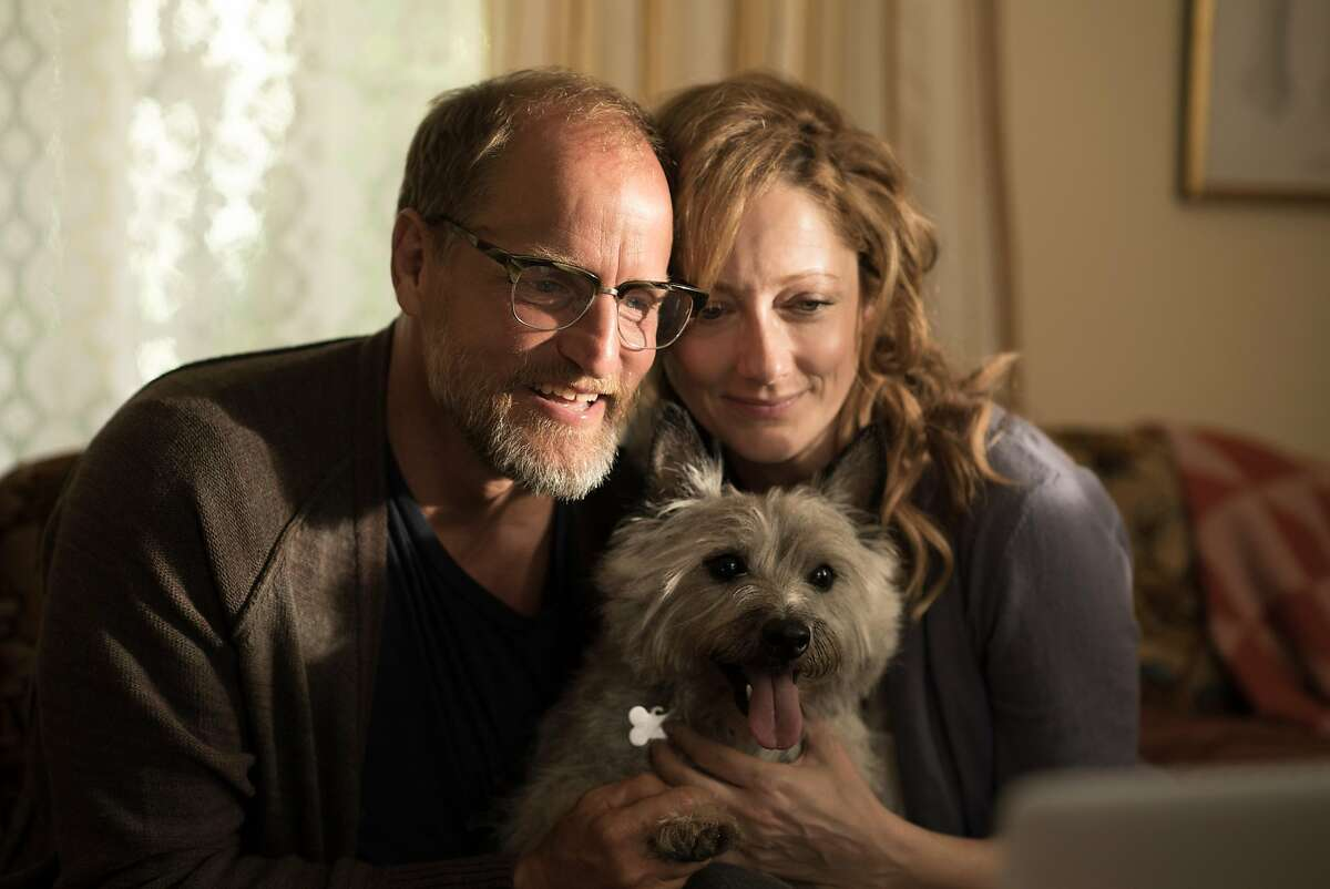 """Woody Harrelson (left) and Judy Greer (right) star in the film adaptation of cartoonist and screenwriter Daniel Clowes's graphic novel, """"Wilson."""" Credit: Twentieth Century Fox Film Corporation All Rights Reserved"""