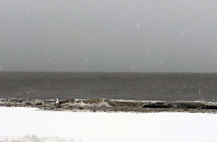Waves from the Long Island Sound crash on Pear Tree Beach during the winter storm on March 14. Photo: Contributed Photo / Jayme Stevenson / Darien News