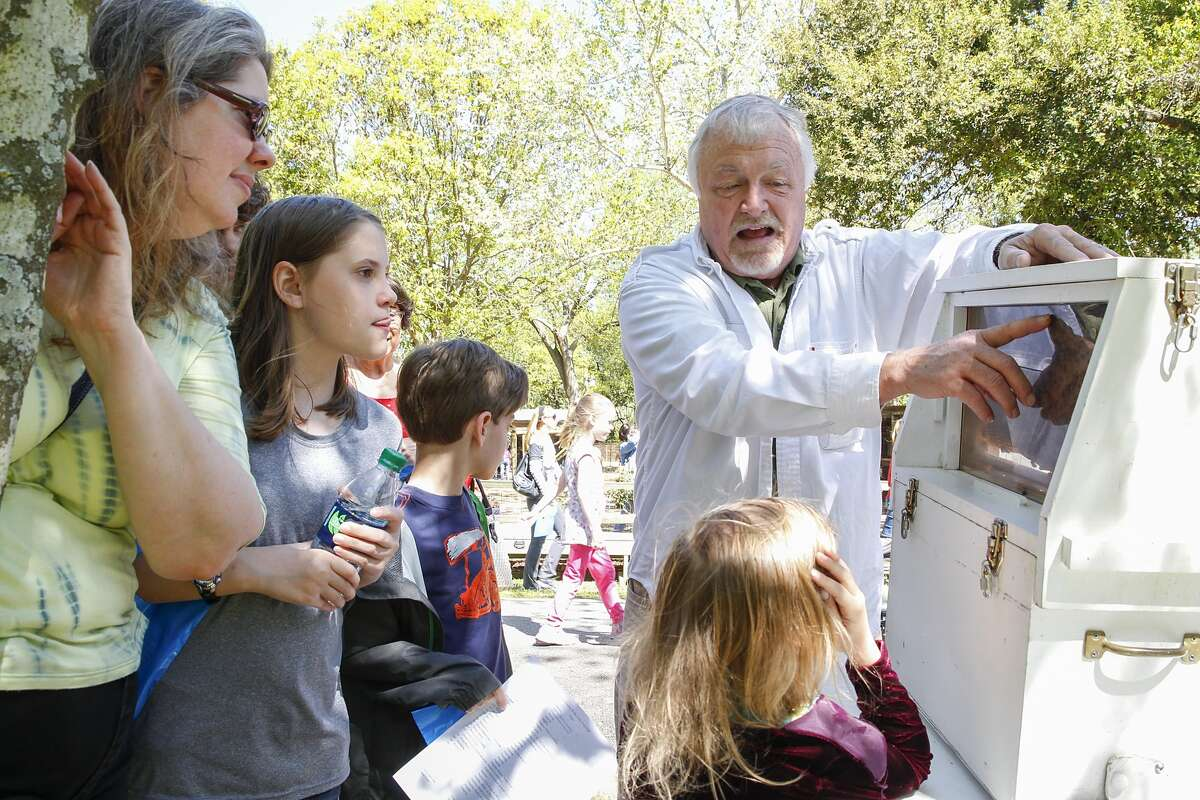 Jeff McMullan of the Ft. Bend Bee Keepers Association shows festival patrons all about honey bees at the annual Folk Life Festival held at the Katy ISD Outdoor Learning Center on March 28, 2015.