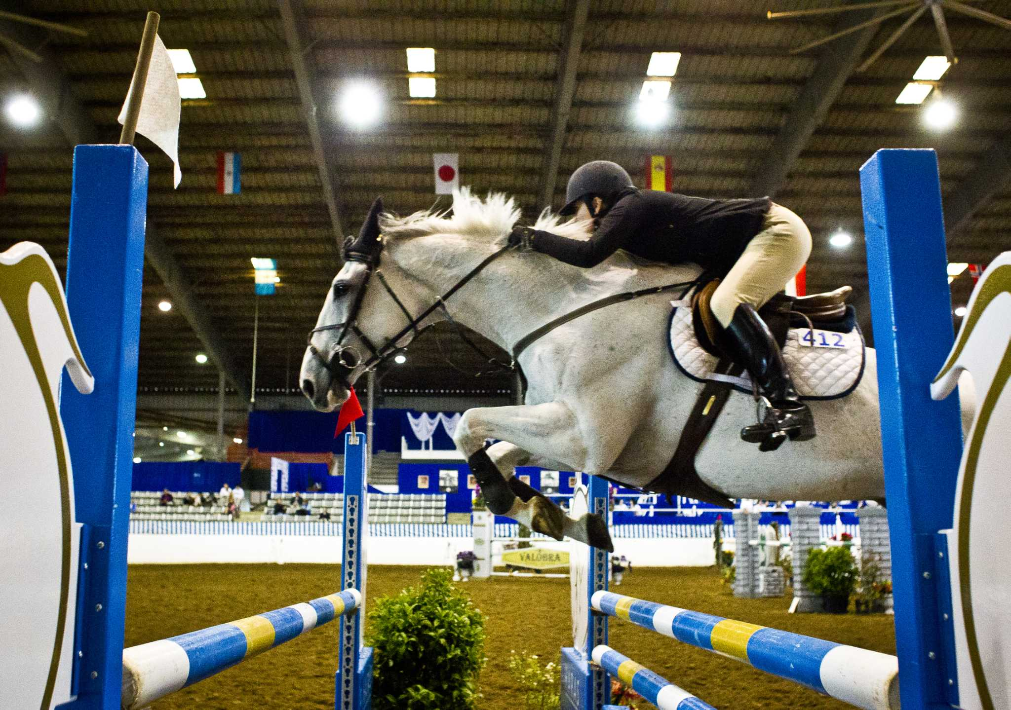 Long in the tooth: Lochinvar wins Pin Oak grand prix