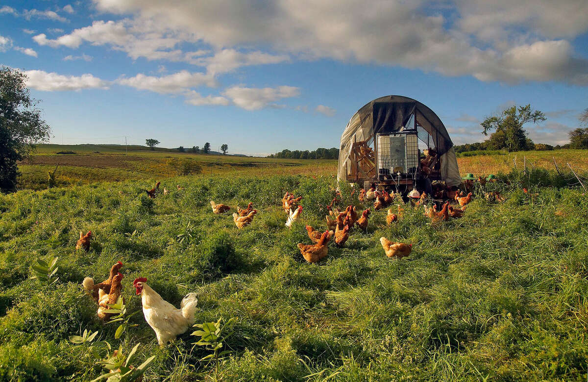 Laughing Earth Farm in the Town of Brunswick. (Agricultural Stewardship Association)