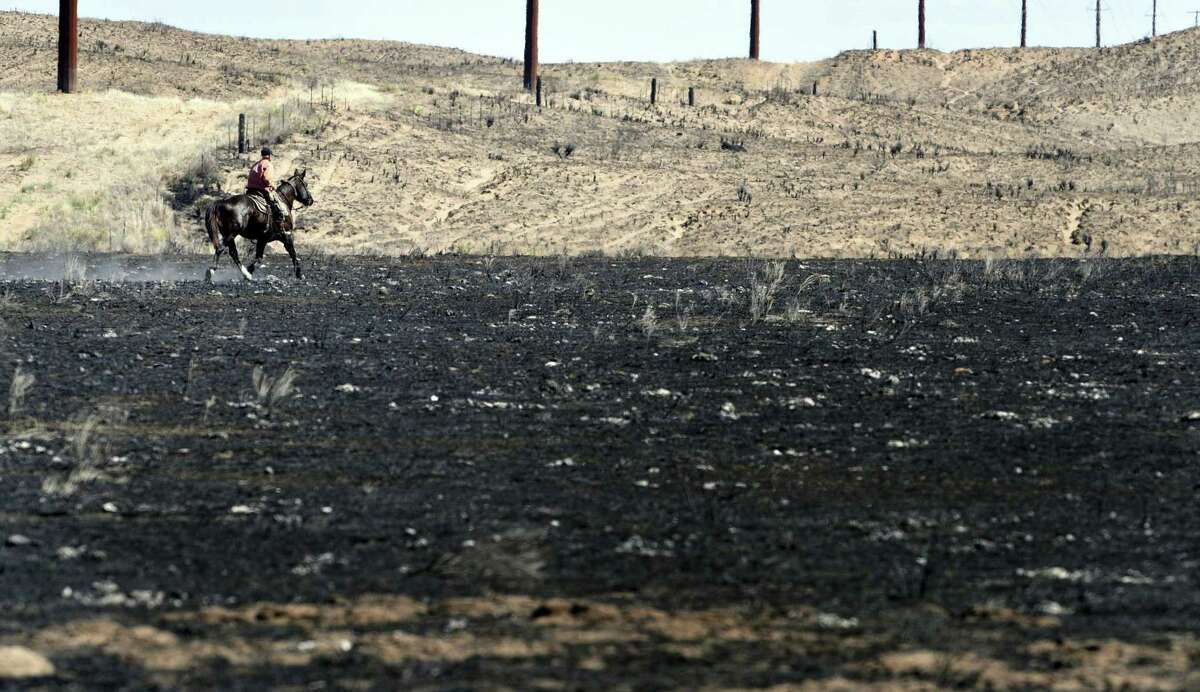 David Crockett, grandfather of Cody Crockett who died in Monday's wildfires, rides the scorched prairie of Franklin Ranch searching for injured cattle after wildfires raced across Gray County, Texas. Crockett said his grandson and friends got trapped while herding cattle in a sandy dunes area of the ranch. Cody Crockett, Sydney Wallace and Sloan Everett lost their lives in the wildfires.