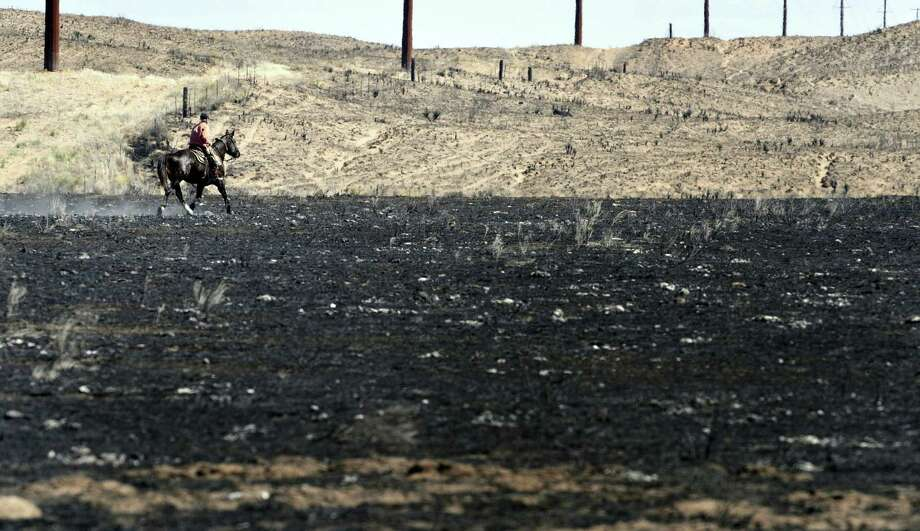 David Crockett, grandfather of Cody Crockett who died in Monday's wildfires, rides the scorched prairie of Franklin Ranch searching for injured cattle after wildfires raced across Gray County, Texas. Crockett said his grandson and friends got  trapped while herding cattle in a sandy dunes area of the ranch. Cody Crockett, Sydney Wallace and Sloan Everett lost their lives in the wildfires. Photo: Michael Schumacher /Associated Press / The Amarillo Globe News