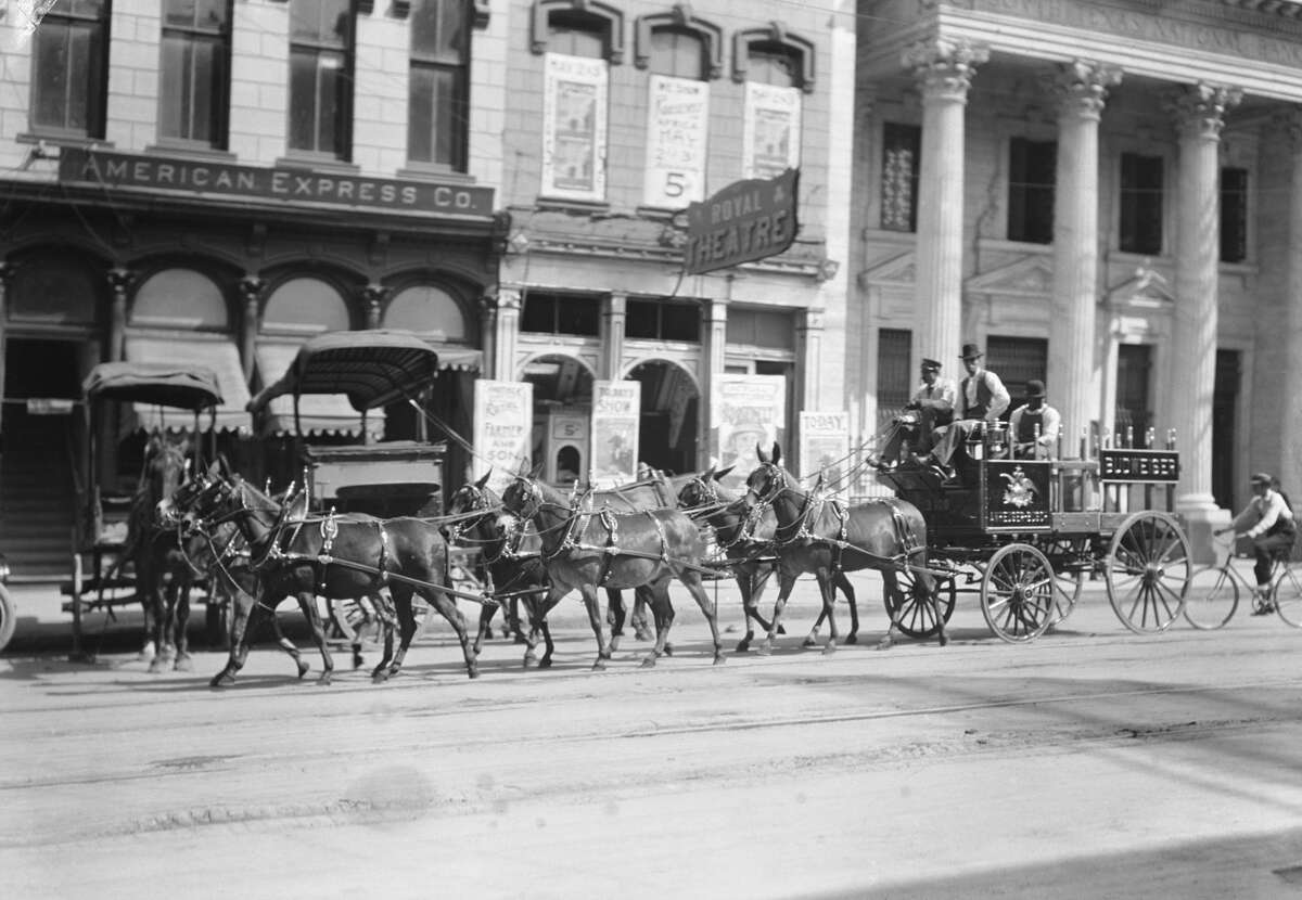 A Budweiser beer wagon visits downtown Houston in 1900.